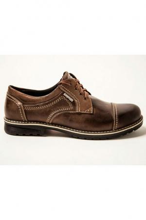 Мужские туфли 009 коричневые