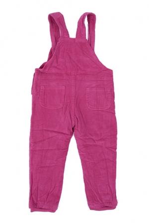 Брюки-комбинезон детские Dress 3305-2